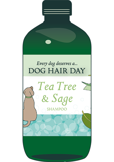 Dog Hair Day Shampoo - the new brand