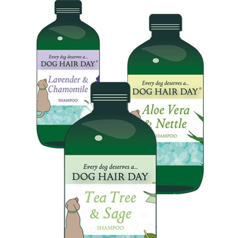 3 bottles of Dog Hair Day dog shampoo